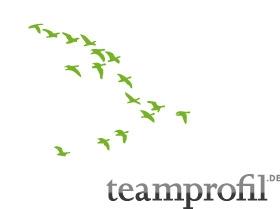 TEAMPROFIL